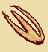 Шляпка цветохвостника (иконка)
