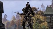 Argonian archer