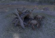 Mudcrab's Hut