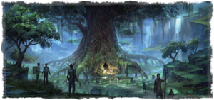 Wyrd Tree Interactive Map