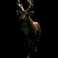 Олень Deer 002