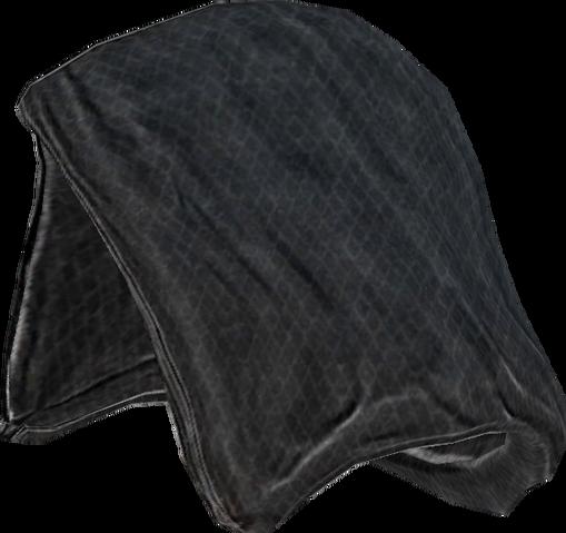 File:Greybeard's Hood.png