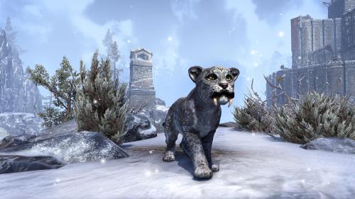 File:Sabre Cat Cub.png