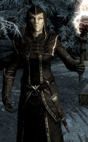 Thalmor Wizard