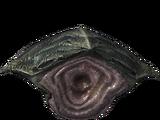 Хитин коруса