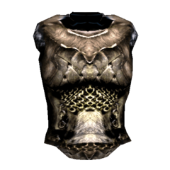 Шкура Спасителя (TES 3 Morrowind)