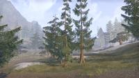 Сиродил (Online) — Вид на перевал Хорунн