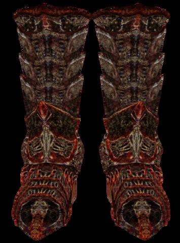 File:Daedric Boots (Oblivion) Female.png