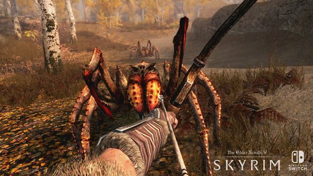 File:SkyrimSwitch Spiders.jpg