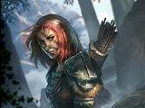 Aela Łowczyni (Legends)