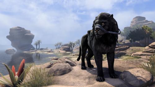 File:Black Senche-Lion.png