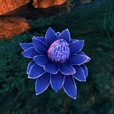 Błękitny wariant jest bardzo podobny do purpurowego, lecz produkuje również <a href=