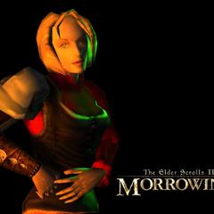 Nordka w TES III: Morrowind