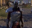 Sergeant Faldrus