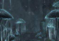 Снегопад в Чёрном Пределе, вид 1.