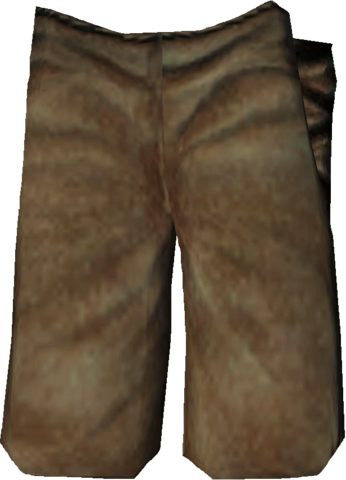 File:Fortify Pants.png