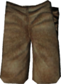Fortify Pants.png