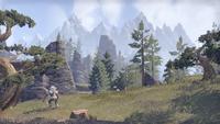 Истмарк (Online) — Дремучие леса
