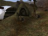 Арвс-Дрелен (Morrowind)