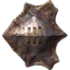 Хитиновый щит