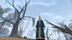 A Falling Wizard - Morrowind