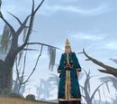 A Falling Wizard