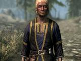 Talsgar the Wanderer