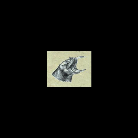 Szkic głowy Horkera