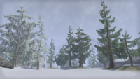 Сиродил (Online) — Заснеженный Зимний предел