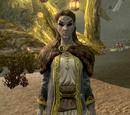 Varona Nelas (Dragonborn)