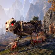 Волчонок-скелет