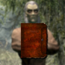 Найти дневник Рунила