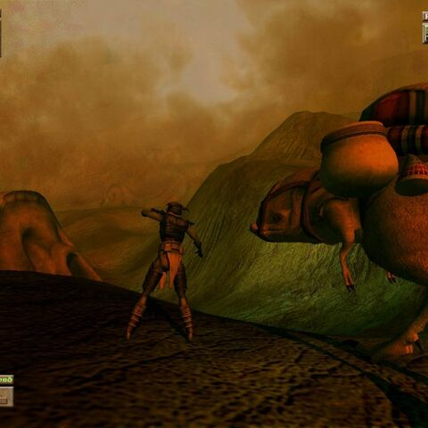 Morrowind Beta - Gnisis