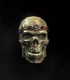 Potema skull