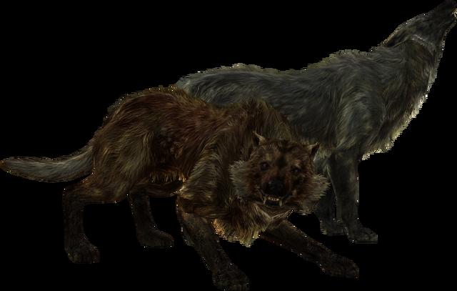 File:TESV Wolves.png