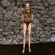 Дорогая рубашка (Morrowind) 5 жен