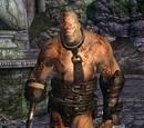 Gatekeeper (Shivering Isles)