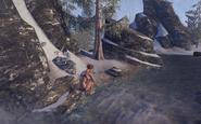 Snow bear plunge3