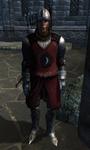 TESIV Guard Skingrad 1