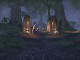 Сад костей