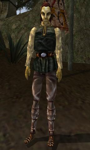 File:Caryarel - Morrowind.png