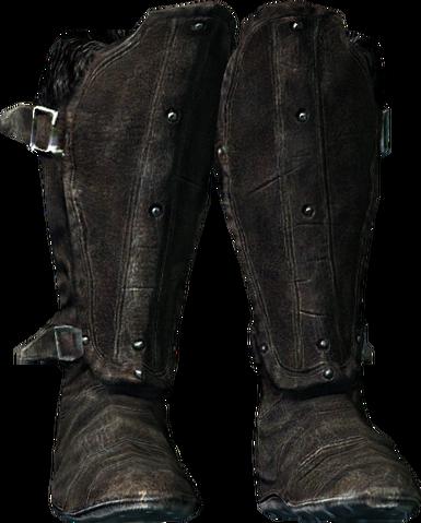 File:Oculatus boots.png