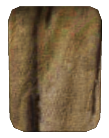 File:CommonskirtMorrowind.png
