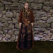 Вычурная Мантия 2 (Morrowind) муж