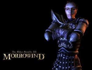 Cesarski (Morrowind)