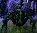 Spawn of Mephala (Fungal Grotto)