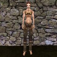 Простые штаны (Morrowind) 2 (жен)