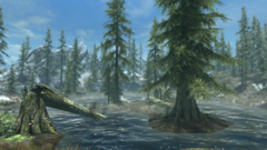 Пруд Чистых Сосен