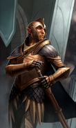 High Elf Soldier card art