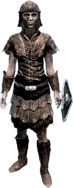 Имперская лёгкая броня (ж)